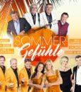 Various - Sommergefühle (2CD 2017)
